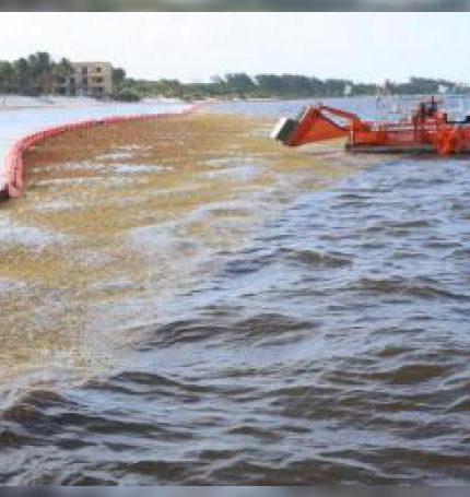 Vista general del 5 de abril de 2019, de los trabajos de limpieza del sargazo en playa Coral, en Cancún, en el estado de Quintana Roo (México). EFE