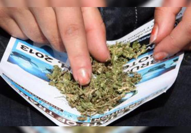 """Una mujer limpia su marihuana el domingo 20 de enero de 2018, durante el """"Marihuana Festival"""" , en Ciudad de M?éxico (México). EFE/Sáshenka Gutiérrez/Archivo"""