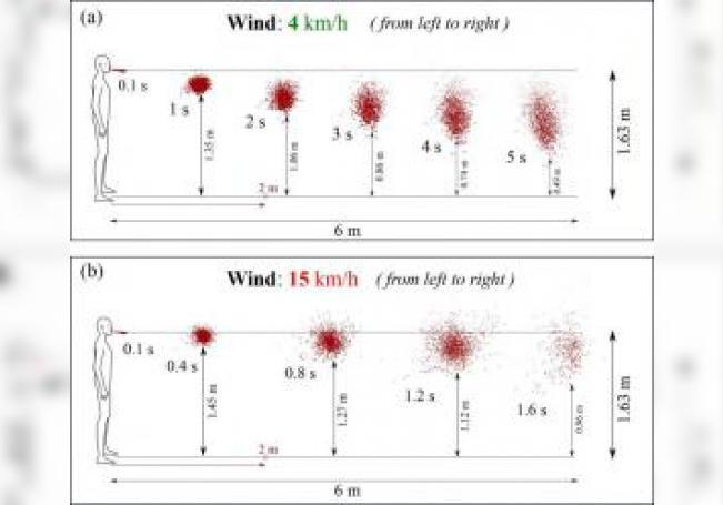 Las gotas de saliva pueden viajar grandes distancias, dependiendo de las condiciones ambientales como la velocidad del viento, la temperatura, la presión y la humedad. EFE/Talib Dbouk y Dimitris Drikakis (American Institute of Physic)