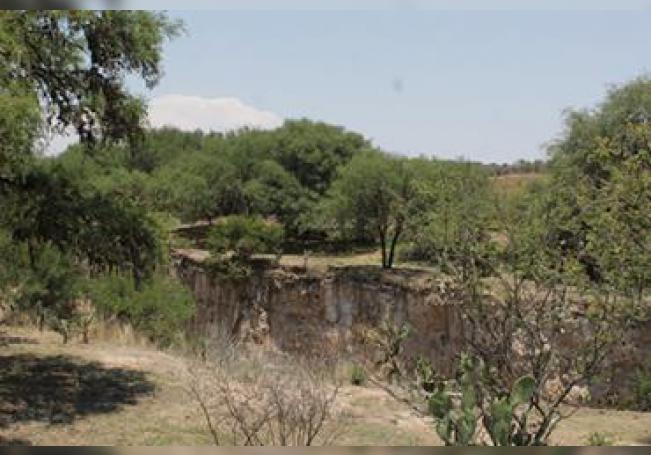 Imagen de la reserva verde protegida.