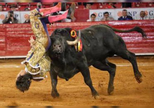 """Momentos de la cornada de Fabián Barba con el toro de regalo, """"Mitotero"""", de Monte Caldera"""