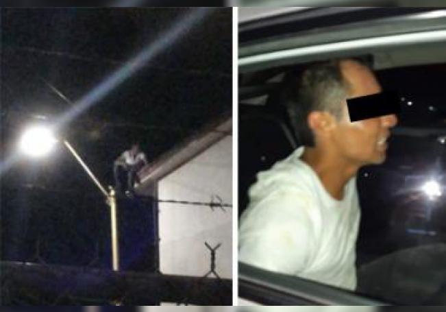 El ladrón se refugió en lo alto de un poste de luz para evitar ser golpeado.