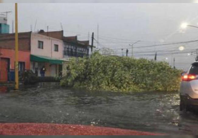 La fuerte lluvia que cayó por la tarde-noche en la capital provocó varias contingencias.