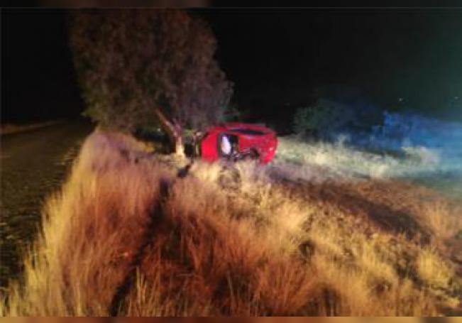 El joven perdió la vida al volcar su vehículo sobre la carretera estatal 43.