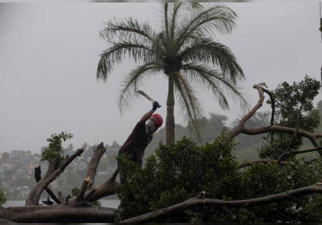 Un bombero corta con un machete un árbol que fue derribado por el viento y la lluviaen Santo Domingo (República Dominicana). EFE/ Orlando Barría/Archivo