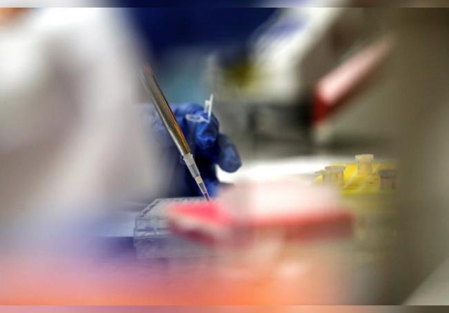 Detalle del trabajo de una científica brasileña en el laboratorio de Inmunología del Instituto del Corazón (Incor) de la Facultad de Medicina de la Universidad de Sao Paulo el pasado 17 de marzo. EFE/ Sebastiao Moreira/Archivo