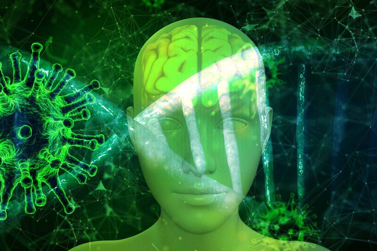 cerebro-humano-17022021-1280x853.jpg